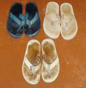 5511b937e3bead Flip Flops